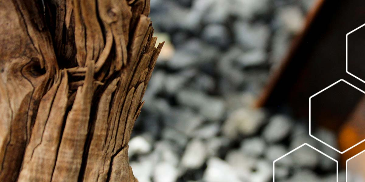 ghostwood-4