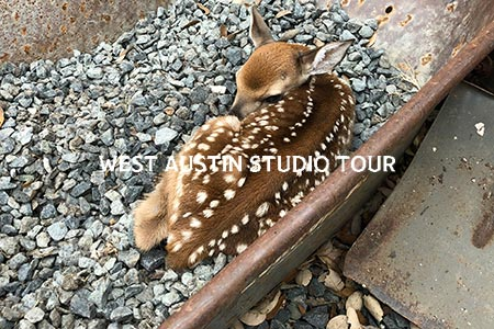 west-9-2019